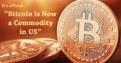 Resized bitcoin commodity